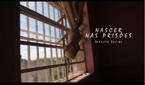 Documentário Nascer nas Prisões